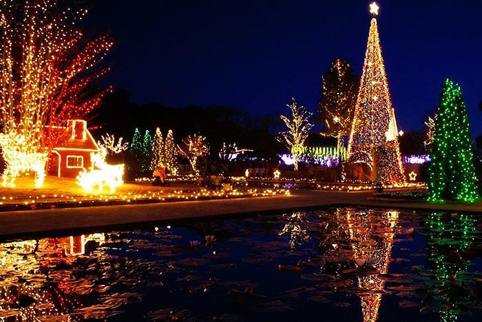 San Diego Christmas Lights.San Diego Holiday Lights City Tour Five Star Tours Tripster