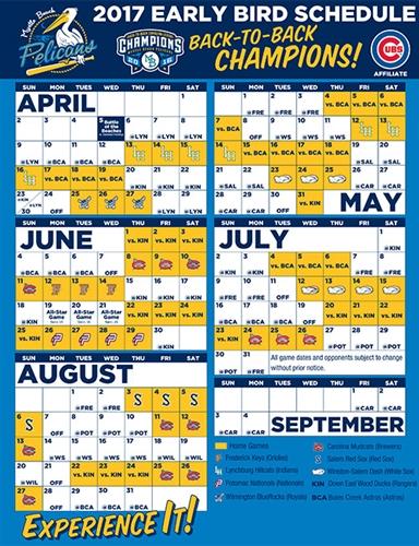 Discount Myrtle Beach Pelicans Tickets