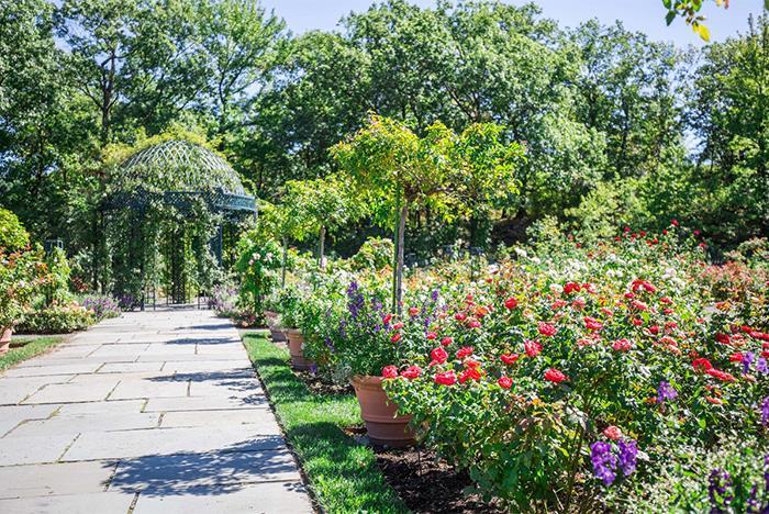 New york botanical garden tickets bronx ny - New york botanical garden tickets ...