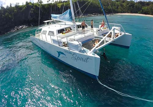 Product 7:00 Ocean Spirit Honolua Bay Snorkel