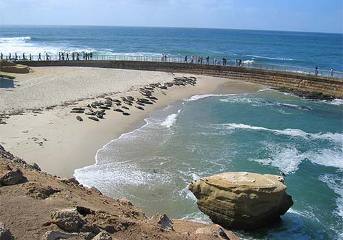 La Jolla San Go Beach The Best Beaches In World
