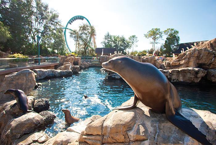 Seaworld orlando tickets discount tickets to seaworld - Busch gardens tampa customer service ...