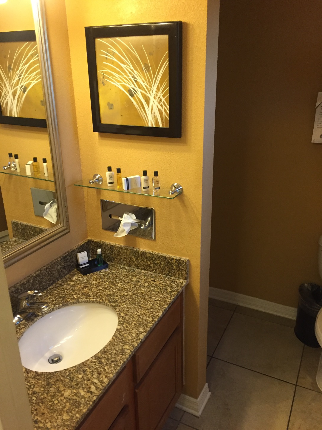 Pet Friendly Hotel Rooms In Kissimmee Florida