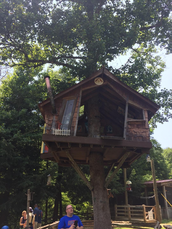 Foxfire Mountain Adventure Park Sevierville Tn Tripster