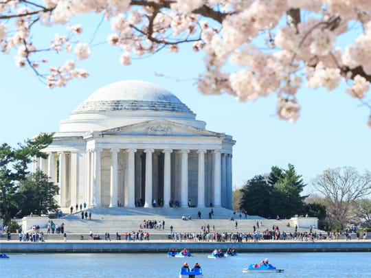 Vacations in Washington D.C.